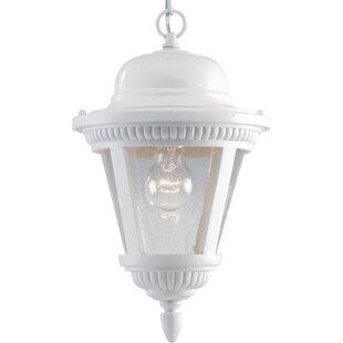 Reviews Triplehorn Ribbed 1-Light Outdoor Pendant By Alcott Hill