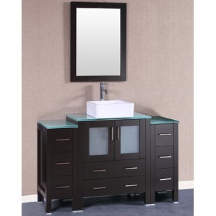 Rochelle 54 Single Bathroom Vanity Set with Mirror by Bosconi