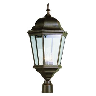 Shop For Fairweather 3-Light Lantern Head By Darby Home Co