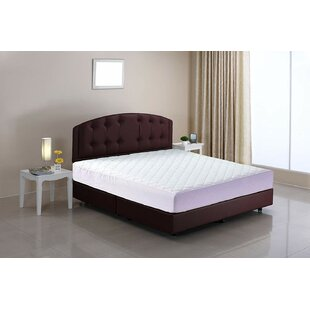 Xochitl Quilted Polyester Mattress Pad