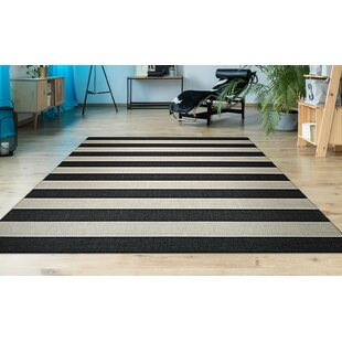 Gallinas Onyx Onyx/Ivory Indoor/Outdoor Area Rug