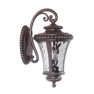 Affordable Price Darla 2 Light Outdoor Wall Lantern By Fleur De Lis Living
