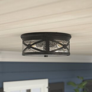 Burwood 2-Light Outdoor Flush Mount By Darby Home Co Outdoor Lighting