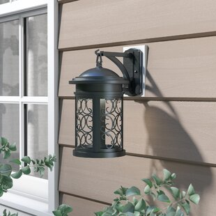 Cole 1-Light Outdoor Wall Lantern