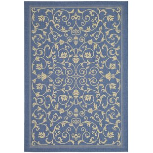 Octavius Blue & Natural Indoor/Outdoor Area Rug