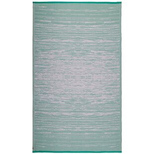 Reba Mint Indoor/Outdoor Area Rug