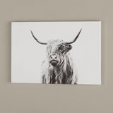 Portrait Of A Highland Cow by Dorit Fuhg - Picture Frame Fine Art Paper Print on Canvas