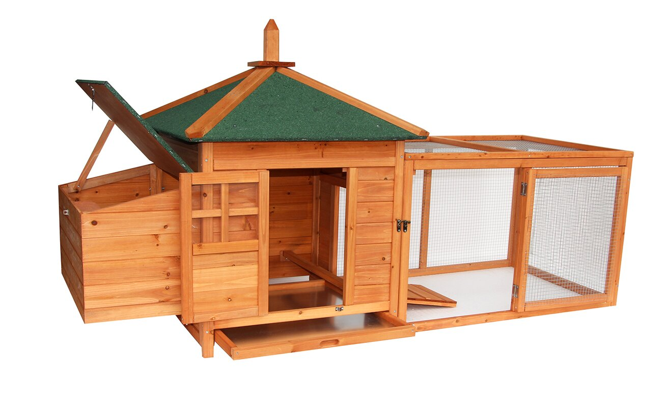 Wooden Backyard Chicken Coop