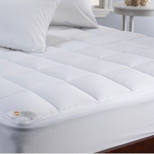 Anna Temperature Regulating Hypoallergenic Waterproof Mattress Cover by Alwyn Home Great price