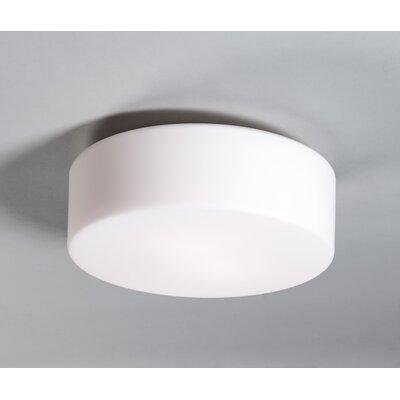 Wrought Studio Aurora 1-Light Flush Mount Bulb Type: Incandescent, Size: 10 H x 10 W x 4 D