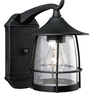Triplehorn 1-Light Incandescent Outdoor Wall Lantern