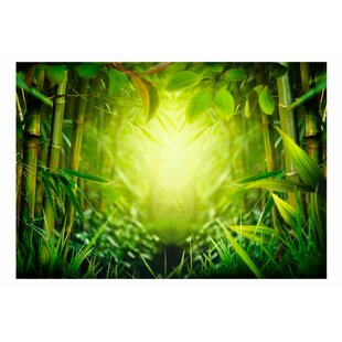 Forest Fairy Wallpaper Mural