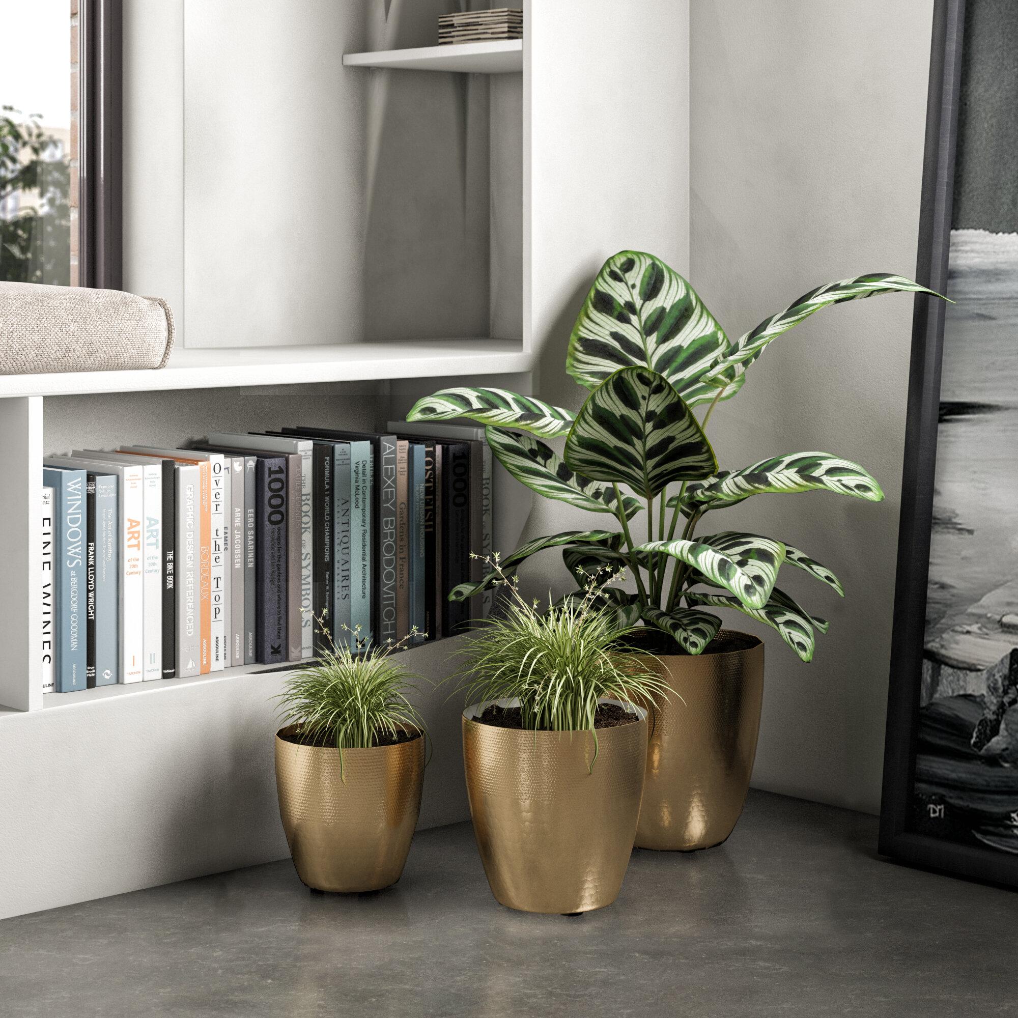 Ludovico 3 Piece Metal Pot Planter Set Reviews Allmodern