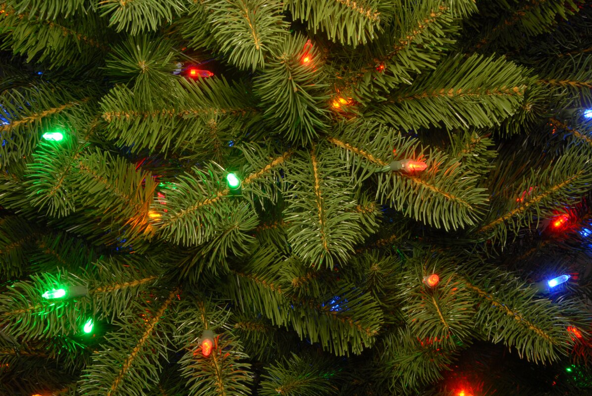 National Tree Co. Bayberry 9\' Green Spruce Artificial Christmas Tree ...