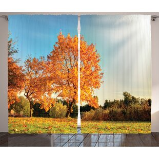 Courts Scenery Autumn Sight With Pale Falling Leaves In Park Foliage Nature Season Concept Graphic Print Text Semi Sheer Rod Pocket Curtain Panels Set Of