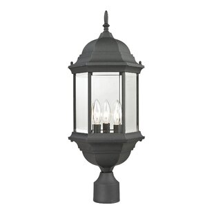 Read Reviews Dipaolo Medium 1-Light Lantern Head By Charlton Home