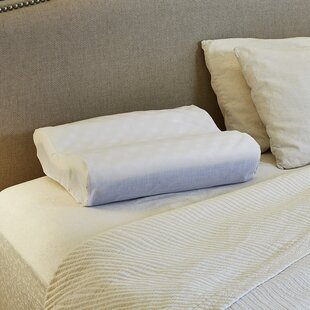 Great choice Contour Foam Standard Pillow By Hermell Softeze