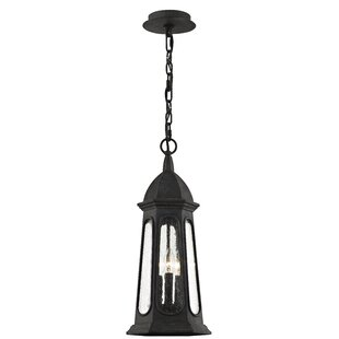 Desi 3-Light Outdoor Hanging Lantern