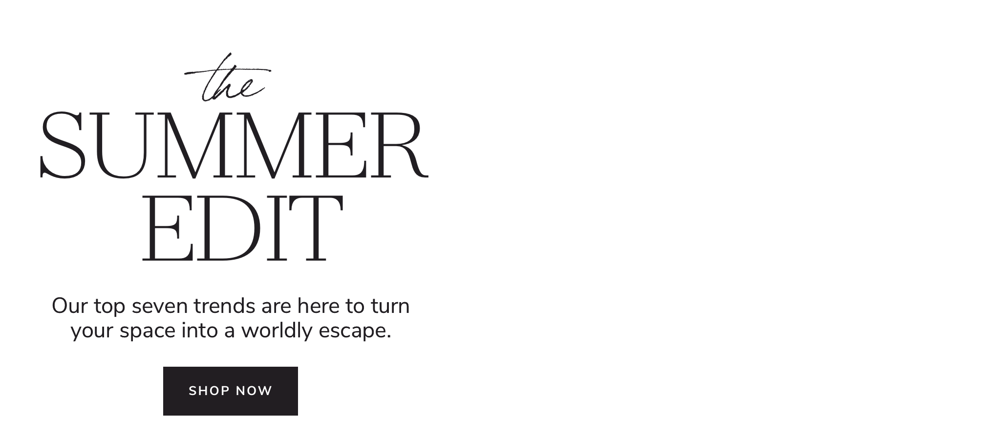The Summer Edit. Shop Now