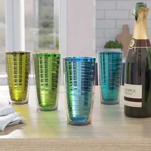 Quinn Plastic Double Wall Glass (Set of 4)