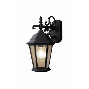 Find a Basic 1-Light Outdoor Wall Lantern By Woodbridge Lighting