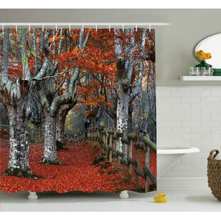Beech Forest Decor Single Shower Curtain
