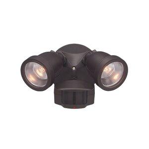 Arie 2-Light Spot Light