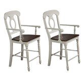 Merrick Napoleon 24 Bar Stool (Set of 2) by Rosalind Wheeler