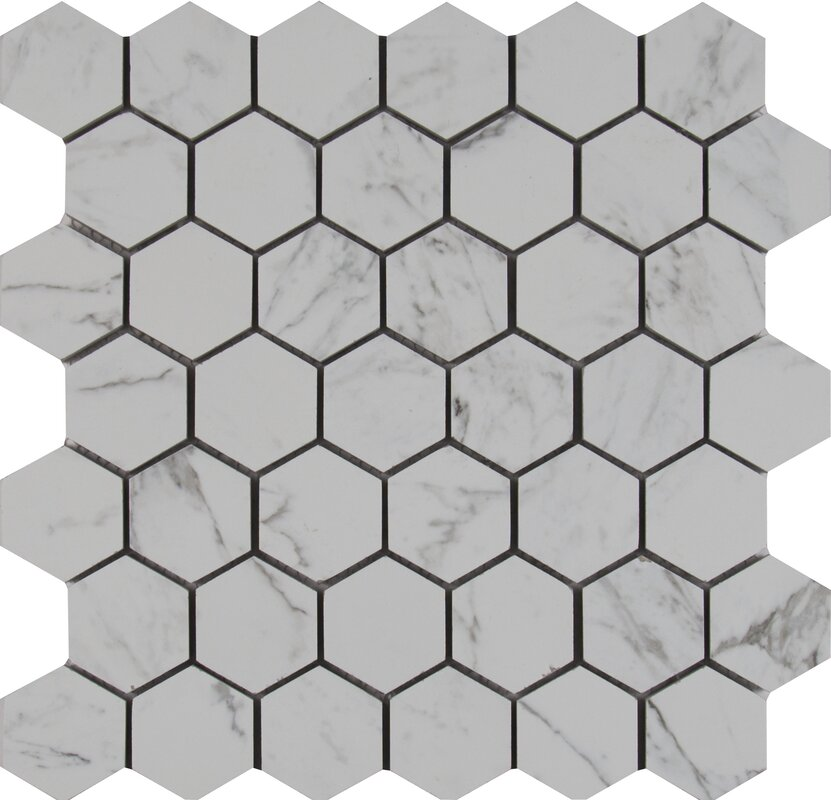 Carrara 2 X Hexagon Porcelain Mosaic Tile
