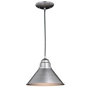 Zuleika 1-Light Outdoor Pendant