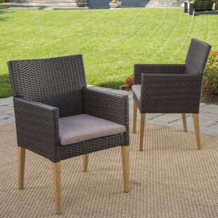 Bo Wicker Patio Dining Chair with Cushion (Set of 2)