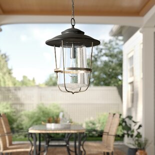 Remington 1- Light Outdoor Hanging Lantern
