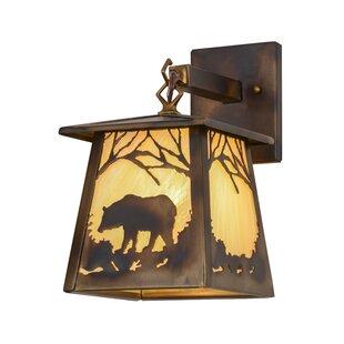 Check Prices Greenbriar Oak 1-Light Outdoor Wall Lantern By Meyda Tiffany