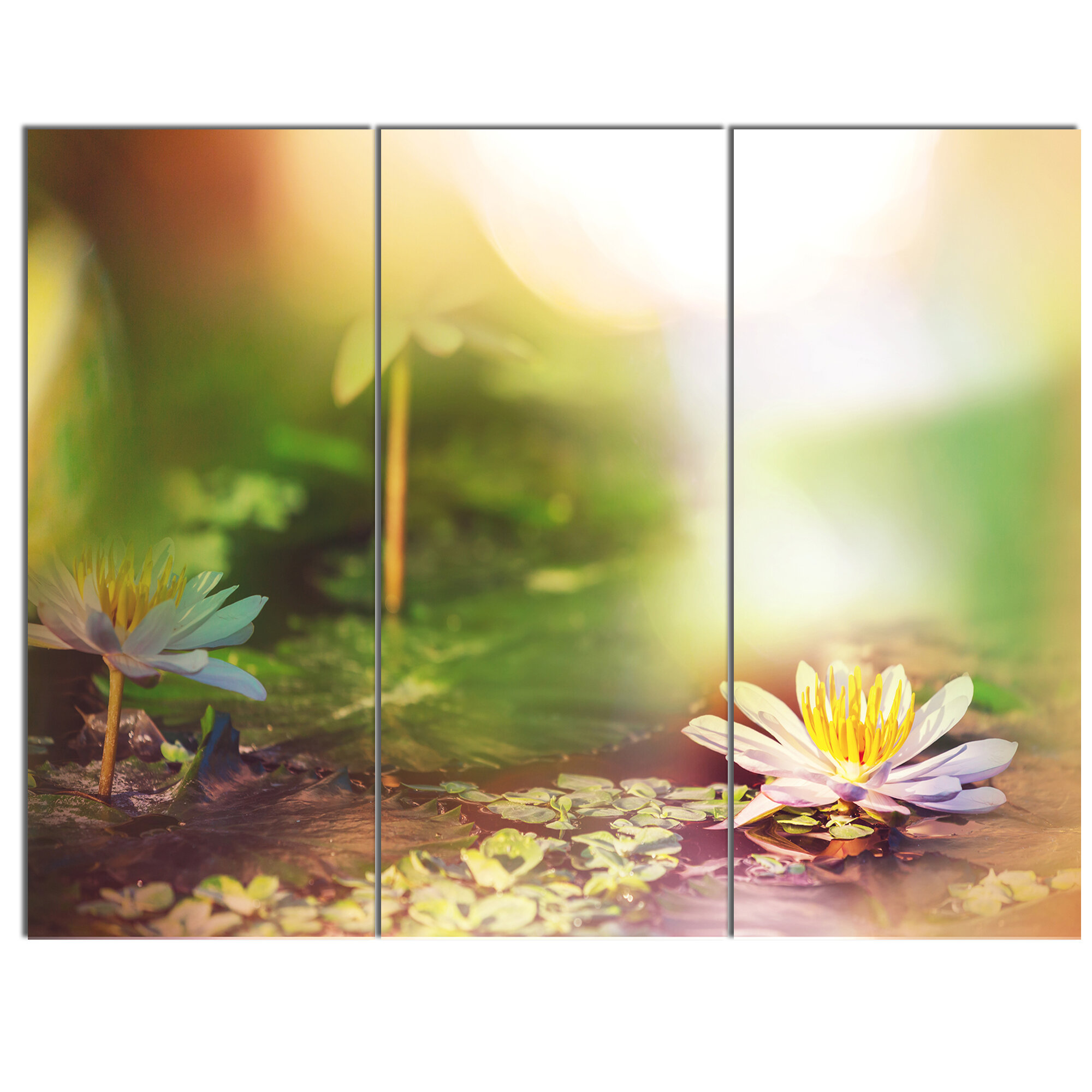 Designart Lotus Flowers On Green Background 3 Piece Photographic
