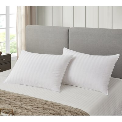 Back Goose Down Bed Pillows You Ll Love In 2019 Wayfair