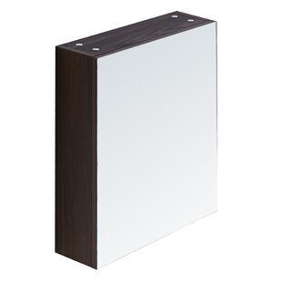 17.7 X 26.8 Surface Mount Medicine Cabinet by InFurniture