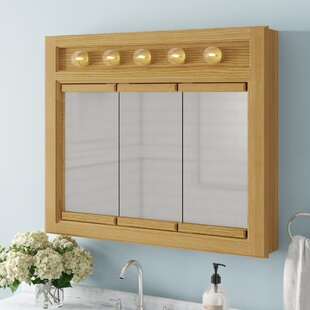 Searle 36 x 30 Surface Mount Framed Medicine Cabinet with 2 Shelves and Lighting by Winston Porter
