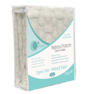 Purchase Pebble Puff 1 Cotton Mattress Pad By Forty-Winks