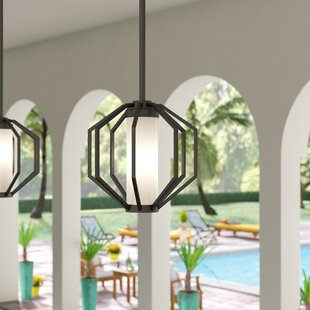 Wester 1-Light Outdoor Pendant