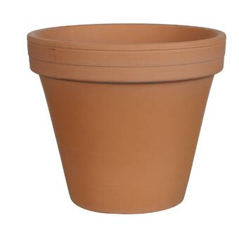Wrought Studio Southwick Small Terracotta Pot Planter Wayfair