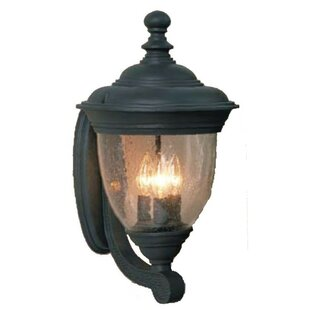 Read Reviews Phillipstown 3-Light Outdoor Sconce By Alcott Hill