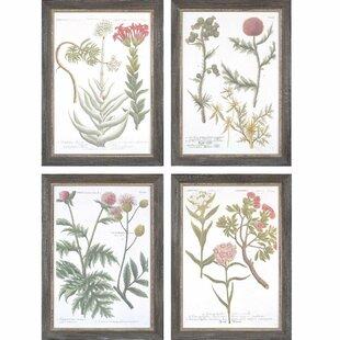 'Botanical Varieties' 4 Piece Framed Graphic Art Print Set