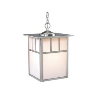 Joelle 1-Light Outdoor Hanging lantern