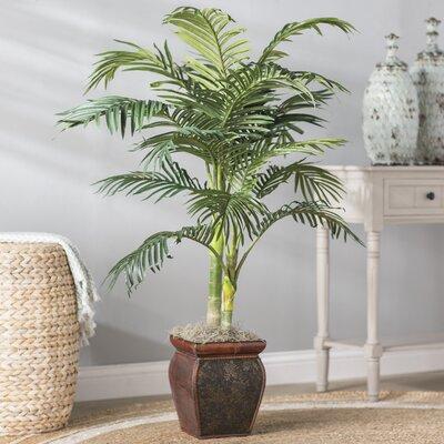 Palm in Decorative Vase Beachcrest Home
