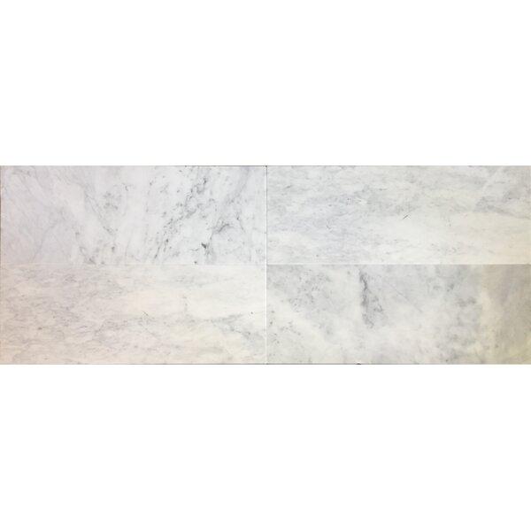 Bella Via 4 X 24 Carrara Marble Field Tile In White Gray Reviews