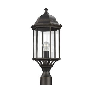 Shop for Anka 1-Light Lantern Head By Alcott Hill