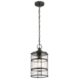 Cowart 1-Light Outdoor Pendant