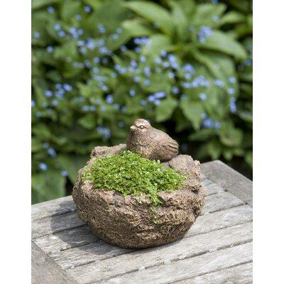 Reales Bird Cast Stone Pot Planter August Grove Color: Graystone