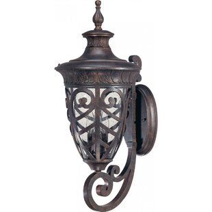 Compare & Buy Dunamoy 3-Light Outdoor Sconce By Astoria Grand