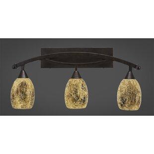 Best Reviews Eisenhauer Modern 3-Light 100W Vanity Light ByRed Barrel Studio